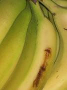 Alles Banane
